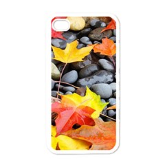 Colorful Leaves Stones Apple Iphone 4 Case (white)