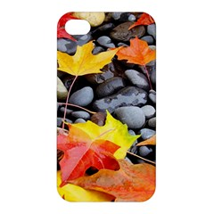Colorful Leaves Stones Apple Iphone 4/4s Hardshell Case by AnjaniArt