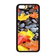 Colorful Leaves Stones Apple Iphone 5c Seamless Case (black) by AnjaniArt