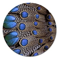 Feathers Peacock Light Magnet 5  (round)