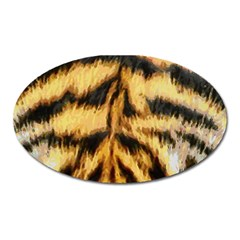 Tiger Fur Painting Oval Magnet by AnjaniArt