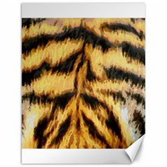 Tiger Fur Painting Canvas 12  X 16
