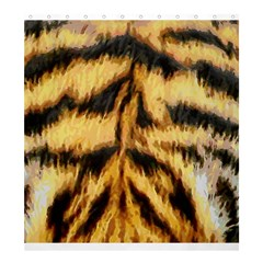 Tiger Fur Painting Shower Curtain 66  X 72  (large)  by AnjaniArt