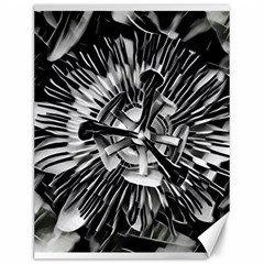 Black And White Passion Flower Passiflora  Canvas 12  X 16   by yoursparklingshop