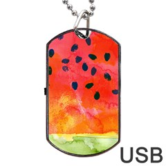 Abstract Watermelon Dog Tag Usb Flash (one Side) by DanaeStudio