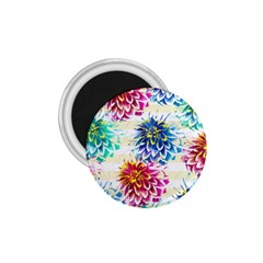 Colorful Dahlias 1 75  Magnets by DanaeStudio