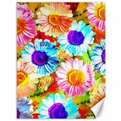 Colorful Daisy Garden Canvas 36  X 48   by DanaeStudio