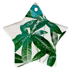 Pachira Leaves  Star Ornament (two Sides)  by DanaeStudio