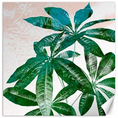 Pachira Leaves  Canvas 20  X 20   by DanaeStudio