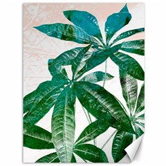 Pachira Leaves  Canvas 36  X 48   by DanaeStudio