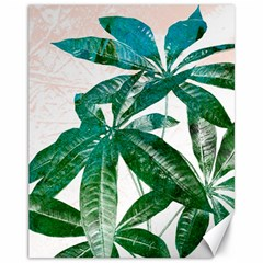 Pachira Leaves  Canvas 11  X 14   by DanaeStudio