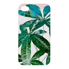 Pachira Leaves  Apple Iphone 4/4s Premium Hardshell Case