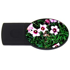 Pink Flowers Over A Green Grass Usb Flash Drive Oval (4 Gb)  by DanaeStudio