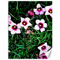 Pink Flowers Over A Green Grass Canvas 36  X 48   by DanaeStudio