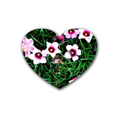 Pink Flowers Over A Green Grass Heart Coaster (4 Pack)  by DanaeStudio