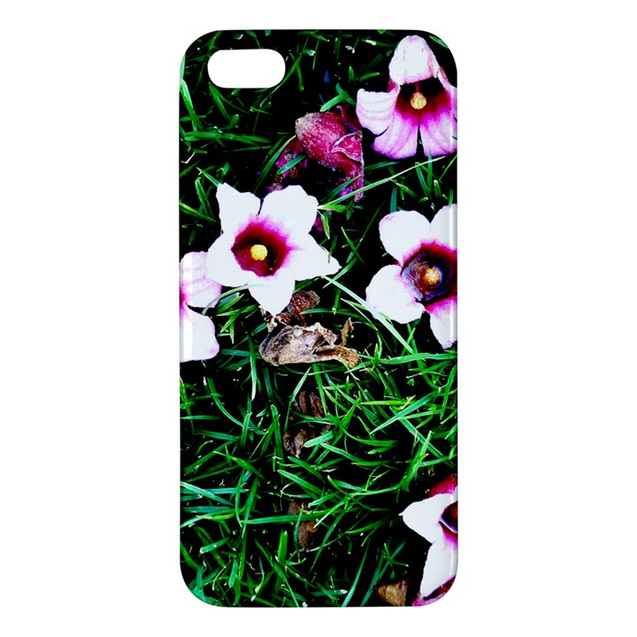 Pink Flowers Over A Green Grass iPhone 5S/ SE Premium Hardshell Case