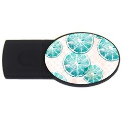 Turquoise Citrus And Dots Usb Flash Drive Oval (4 Gb)  by DanaeStudio