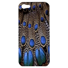 Feathers Peacock Light Apple Iphone 5 Hardshell Case by AnjaniArt