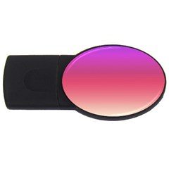 Blue Pink Purple Red Usb Flash Drive Oval (2 Gb)  by AnjaniArt