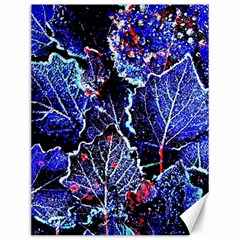 Blue Leaves In Morning Dew Canvas 12  X 16