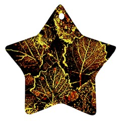 Leaves In Morning Dew,yellow Brown,red, Ornament (star)  by Costasonlineshop