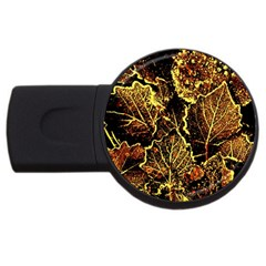 Leaves In Morning Dew,yellow Brown,red, Usb Flash Drive Round (2 Gb)