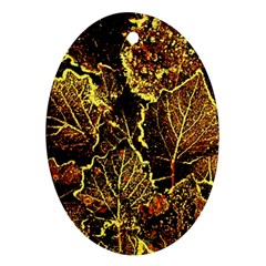 Leaves In Morning Dew,yellow Brown,red, Oval Ornament (two Sides) by Costasonlineshop