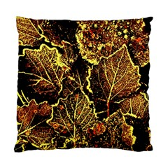 Leaves In Morning Dew,yellow Brown,red, Standard Cushion Case (two Sides) by Costasonlineshop