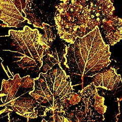Leaves In Morning Dew,yellow Brown,red, Magic Photo Cubes by Costasonlineshop