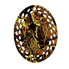 Leaves In Morning Dew,yellow Brown,red, Oval Filigree Ornament (2 Side)  by Costasonlineshop