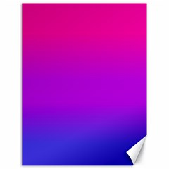 Pink Purple Blue Canvas 18  X 24   by AnjaniArt