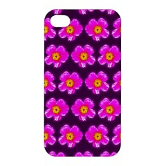 Pink Flower Pattern On Wine Red Apple Iphone 4/4s Hardshell Case