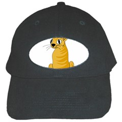 Yellow cat Black Cap