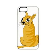 Yellow cat Apple iPhone 5 Classic Hardshell Case (PC+Silicone)