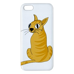 Yellow cat Apple iPhone 5 Premium Hardshell Case