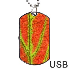 Unique Leaf Dog Tag Usb Flash (two Sides)  by AnjaniArt