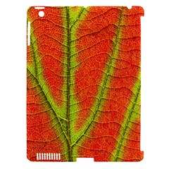 Unique Leaf Apple Ipad 3/4 Hardshell Case (compatible With Smart Cover)