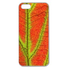 Unique Leaf Apple Seamless Iphone 5 Case (clear) by AnjaniArt