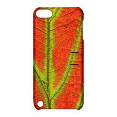 Unique Leaf Apple Ipod Touch 5 Hardshell Case With Stand