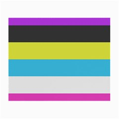 Bigender Flag Small Glasses Cloth