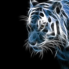 Ghost Tiger Magic Photo Cubes by Brittlevirginclothing