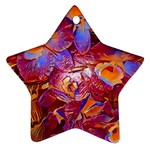 Floral Artstudio 1216 Plastic Flowers Star Ornament (Two Sides)  Back