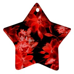 Red Flower  Ornament (star)  by Brittlevirginclothing