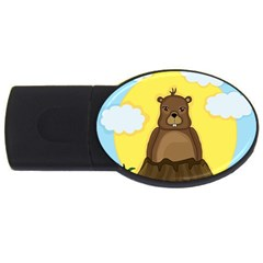 Groundhog Day  Usb Flash Drive Oval (2 Gb)  by Valentinaart