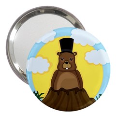 Groundhog 3  Handbag Mirrors by Valentinaart
