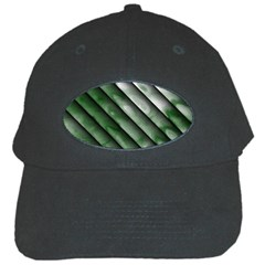 Green Bamboo Black Cap