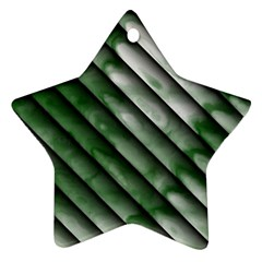Green Bamboo Star Ornament (two Sides)  by AnjaniArt