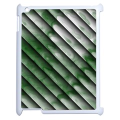 Green Bamboo Apple Ipad 2 Case (white)
