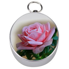 Rose Pink Flowers Pink Saturday Silver Compasses by Amaryn4rt