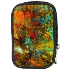 Mixed Abstract Compact Camera Cases by digitaldivadesigns